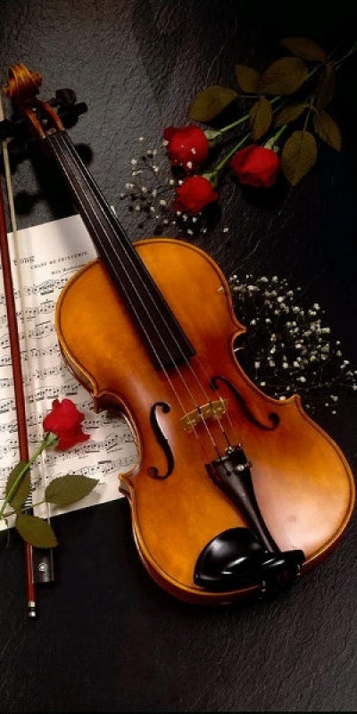 Bowed strings